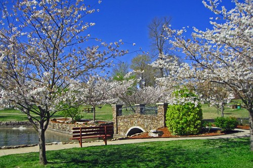 Janssen Park In Spring 3