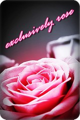 exclusivelyrose