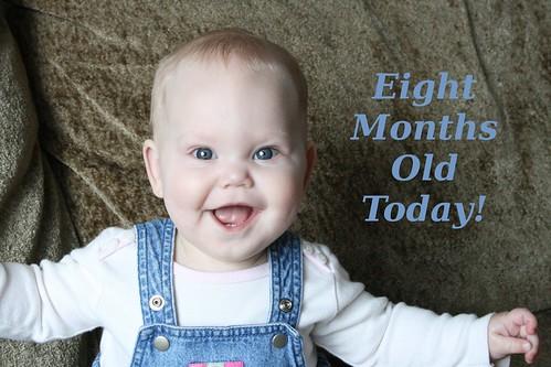 eight_months
