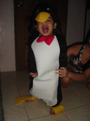Crying penguin