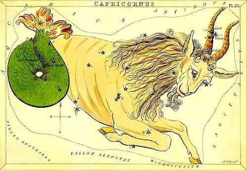 Capricorn - goat-fish