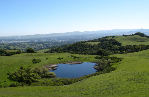 Hike at Briones Regional Park -- Bear Creek Trail Head