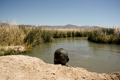 mud bath (serjy) Tags: california nude nudist deathvalley hotsprings skinnydipping mudbath tecopa