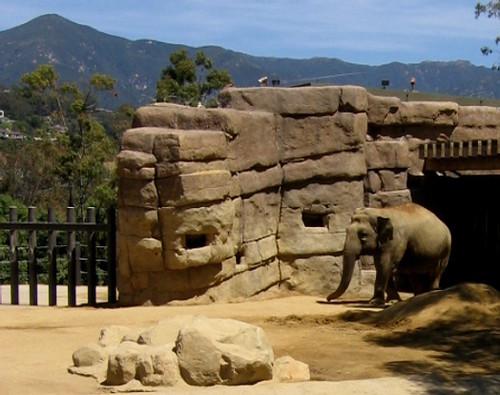 Elephant Santa Barbara Zoo