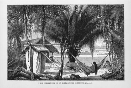 008-Los Ríos Amazonas y Madeira 1875- Primer asentamiento de un recolector de caucho en el Madeira