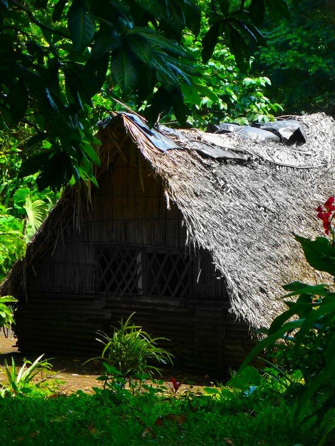 Vanuatu : Ile de Tanna #66: case