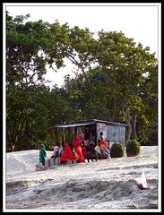 A vlillage shop on the river bank (sytoha / Syed Touhid Hassan) Tags: tree green nature sand riverbank bangladesh bogra ruralbangladesh villageshop remotevillage sariakandi sytoha syedtouhidhassan ruralpeople underprivilegedpopulation bangladeshivillages