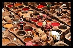 Morocco Fes Dye Pits