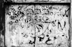 vecchi e donnine (Assi-one) Tags: street old italy streetart man men muro argentina wall torino graffiti book stencil women libro spray il donne walls piccole stencilart barba sparse parigi muri dario pochoir composizione storia vecchi sviluppo rughe baffi tatuaggi bombolette urbani editore quadrante late80 handcutted lanzardo assione fine80