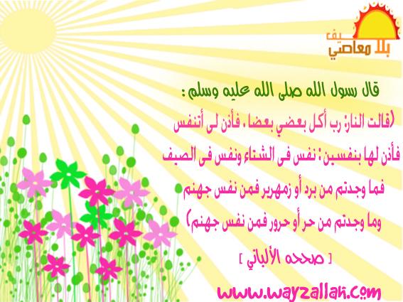صيف بلا معاصى ( بطاقات ) 3628796336_877878ba4e_o