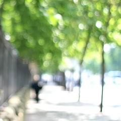 a part ... (_nejire_) Tags: light summer england man tree green london canon f14 explore part 177 carlzeiss 10faves sooc nejire 400d eos400d canoneos400d fave10 planart50mm 1005am mhashi carlzeissplanart1450ze apartofearly earlysummerlight 8015424g8am