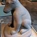 Ahuizotl: Water Dog