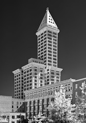Smith Tower (longbowsnyper) Tags: seattle blackandwhite bw washington shift polarizer smithtower redfilter lightroom cs4 perspectivecontrol nikond80 18135mmkitlens silverefex