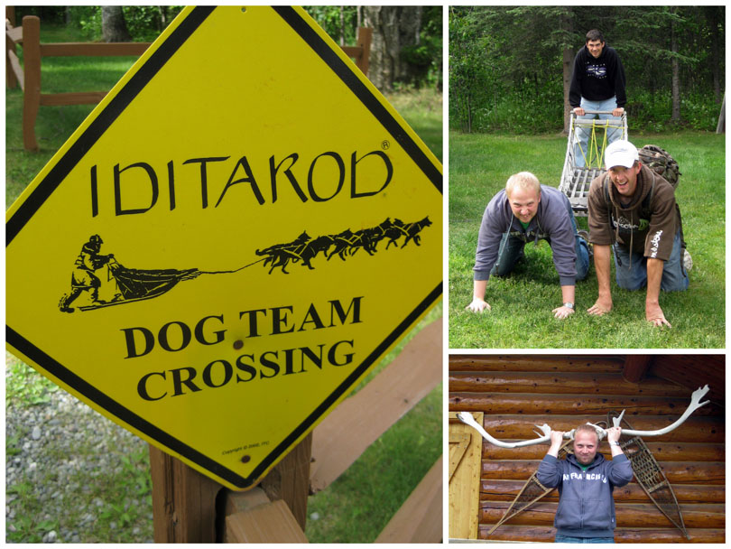 Iditarod Dog Team