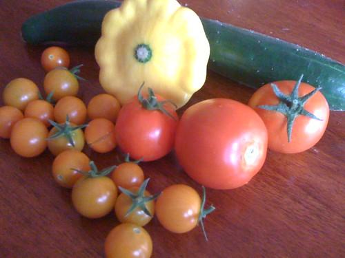 Garden Harvest 7/21/09