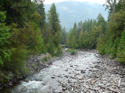 Kokanee Creek