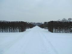 BILD0292 (Snowflake86) Tags: winter hannover impressionen garten winterlandschaft grten berggarten georgengarten groser herrenhuser welfengarten