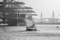 Hafenszene (Duke.Box) Tags: nikon hamburg schiffe hamburgerhafen containerterminal containerhafen nikond700 nikon70200mmf28vrii nikkor70200mmf28vrii oliverutesch hamburgerfotofreaks
