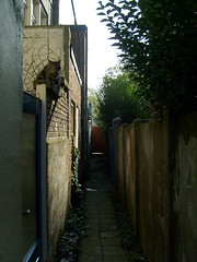 Alley 1 (Evelienvdv) Tags: cat dark alley hallway mysterious