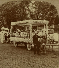 animated Atchison Corn Carnival 1905 (7 of 7) (Thiophene_Guy) Tags: stereoview hill studio atchison kansas kans kan ks corn carnival 1905 atchisonhistoryproject 3d stereotype race segregation animatedstereo animatedgif motionparallax stereo parallax stereophotomaker monochrome blackandwhite wiggle wiggly animated gif derivativeworks thiopheneguy imagescannedbythiopheneguy 20thcentury stereogram history jiggle jiggly 1900s wigglegram ぷるぷる プルプル3d プルプル