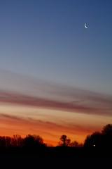 Racing the Sun! (p.csizmadia) Tags: blue ohio sky orange moon color sunrise dawn luna oh streaks brilliant daybreak lorain csizmadia pcsizmadia