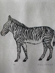Chevy's variety of Zebra