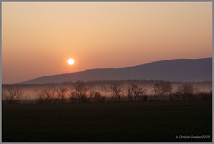 Hazy Fields (grundi1) Tags: morning sunrise austria nebel sony 300 lower alpha hazy sonnenaufgang morgen niedersterreich dunstig hiwosomoshots