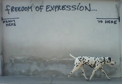 FREEDOM OF EXPRESSION... (Phreak 2.0) Tags: freedom tlt1 tlt0