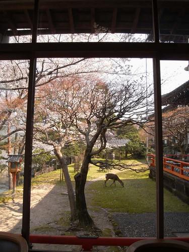 『奈良ホテル』@奈良市高畑-12