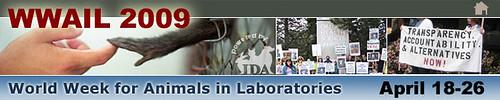 WWAIL 2009 - IDA Header