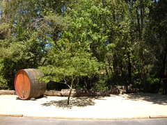 Site 10 - Wine Barrel and Tree