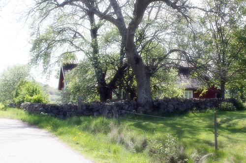 Hus vid gamla Varberg