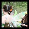 IMG_1010a Posie's wings.