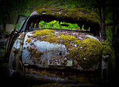 Moss Taking Over (Zen Roxy) Tags: old cars abandoned nature canon crust moss rust decay rusty forgotten oldcars rustycars corrode bstns carcemetry bilkirkegrd 5dmarkii