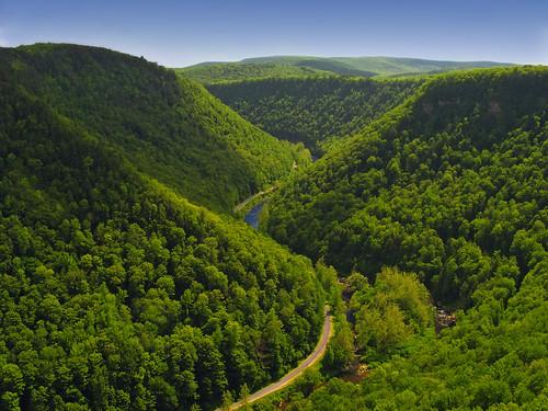 フリー画像| 自然風景| 山の風景| 道の風景| 緑色/グリーン| アメリカ風景|      フリー素材|