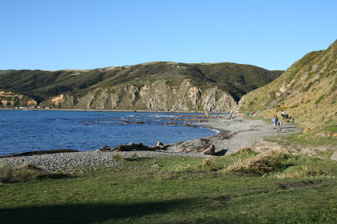 Makara Beach coastal walk