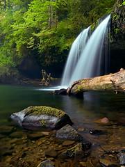 Butte Creek Falls (Christina Angquico) Tags: oregon olympus waterfalls marioncounty e500 buttecreek zd 1454mm upperbuttecreekfalls christinaangquico