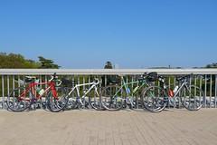 多摩湖自転車記念撮影