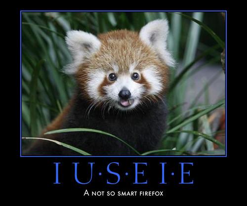 I use Internet Explorer - a not so smart firefox