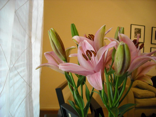 Tips & Tricks: Bring Spring Into Your Home