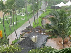 Quick Rain Storm (Brave Heart) Tags: vacation hawaii photo picture palmtrees lookdown kauai rainstorm raining 2009 kauaimarriottresortbeachclub islandstorm kauaimarriottandbeachclub