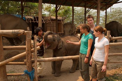 Elephant Nature Park-040