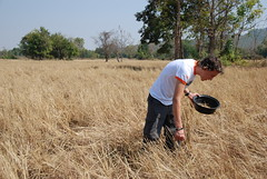 '09 Youth Ambassador Lennon gets to work in a harvested field (World Vision Aus - STIR) Tags: hour 40 2009 famine