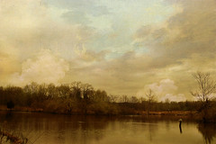 painted sky (carroll.mary (so behind I'll never catch up)) Tags: sky painterly texture nature water clouds landscape newjersey swamp greatswamp proudshopper vosplusbellesphotos artistictreasurechest explorepg33