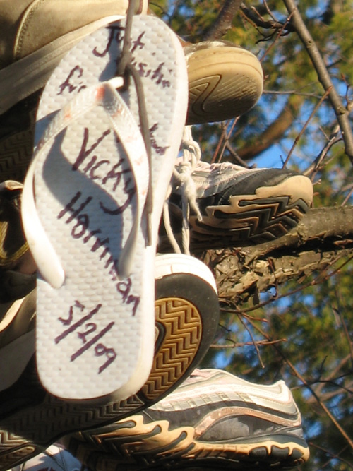Beaverton Shoe Tree (3)