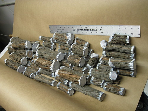 small pieces of Bottlebrush limb, for turning