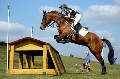 [フリー画像] [動物写真] [哺乳類] [馬/ウマ] [跳ぶ/ジャンプ] [騎手]      [フリー素材]
