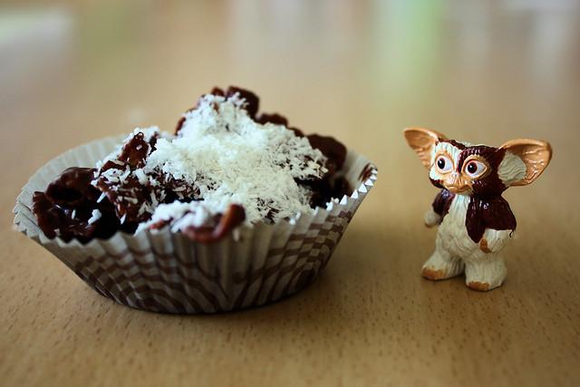Gizmo et la rose des sables au chocolat