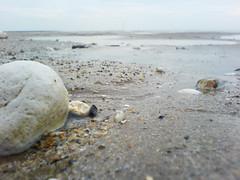 Even Flow (`miRЯim ☮) Tags: light sea beach phonecam chalk sand k750i bokeh pebbles phonecamera digitalcameraclub