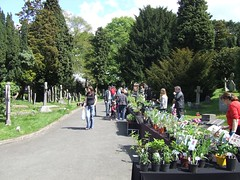 Plant Fair in Stapenhill at The Greenhouse